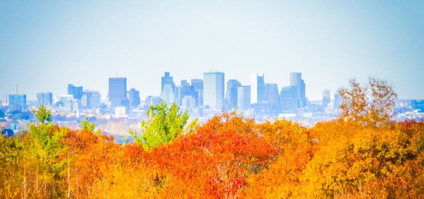 the boston skyline from blue hills reservation with autumn trees