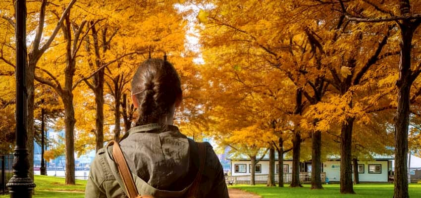 Woman walking past fall trees