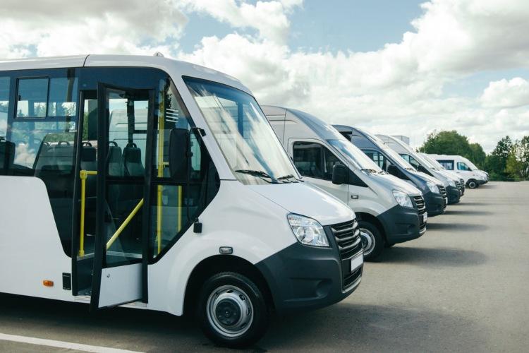 A row of white minibuses