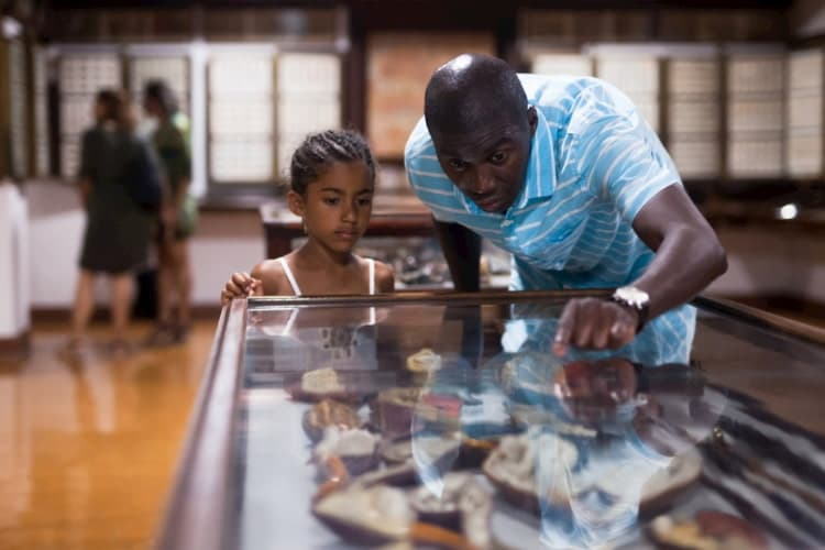 A man and his daughter are staring at a museum exhibit