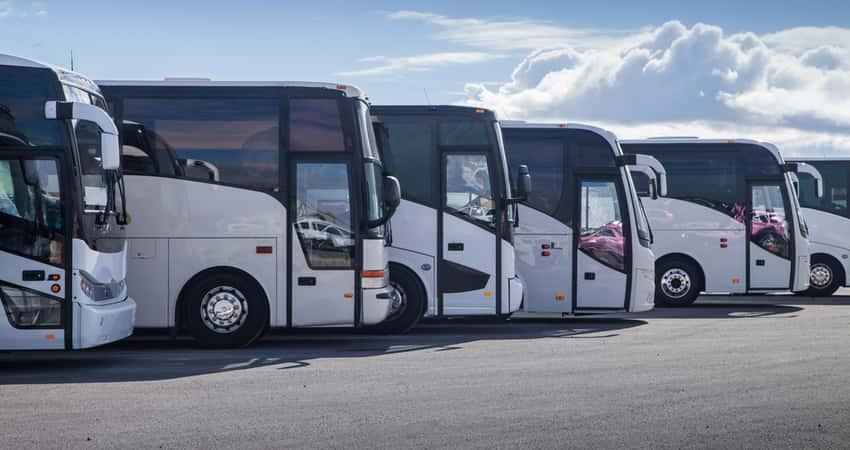 A fleet of coach buses