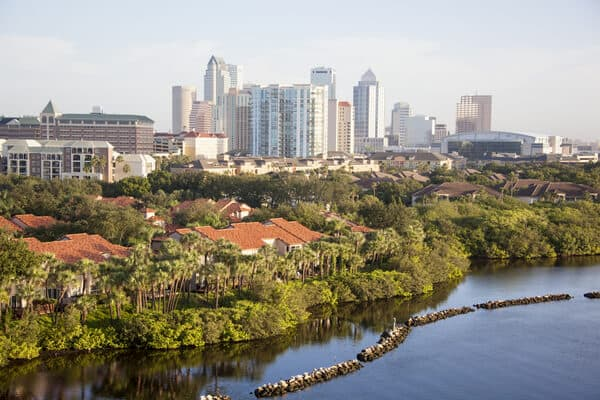 a tree-lined shore with tampa buildings in the background