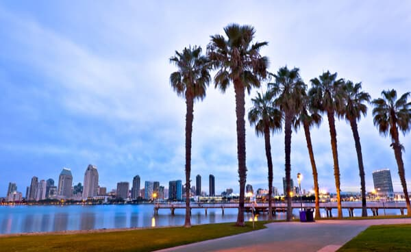 Palm trees with the San Diego skyline in the distance during evening hours