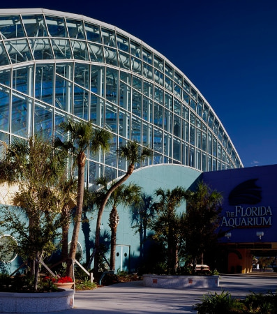An arch located at the entrance of the Florida Aquarium