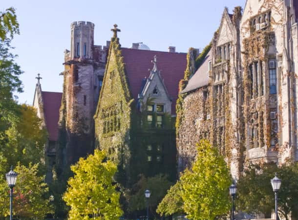 An ivy-covered, old building on the campus of the University of Chicago