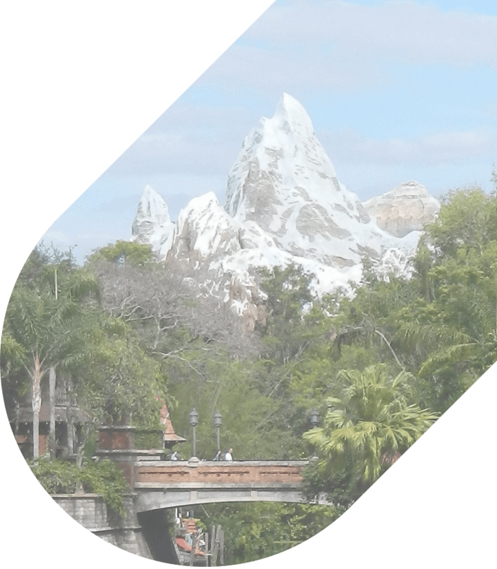 Expedition Everest in Animal Kingdom at Disney World