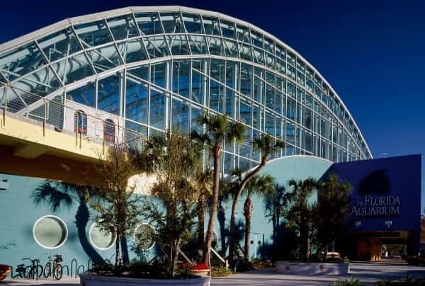 The glass exterior and entrance of the Florida Aquarium