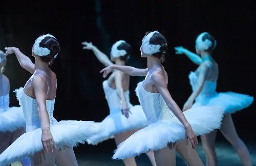 swan-lake-ballet-performers
