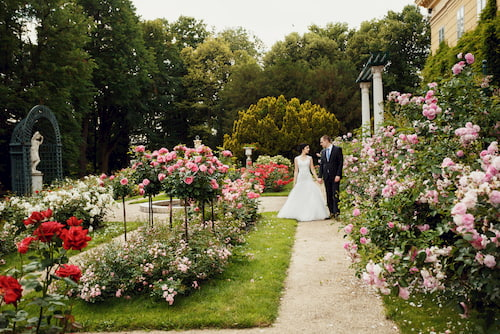 a couple holds hands in a flower garden