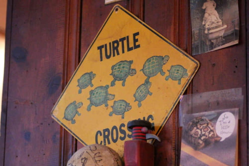 turtle crossing sign at Big Joe's in Chicago