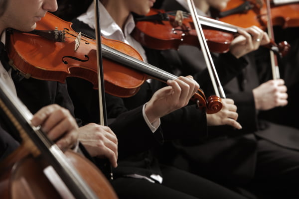 a lineup of violin players performing in an orchestra