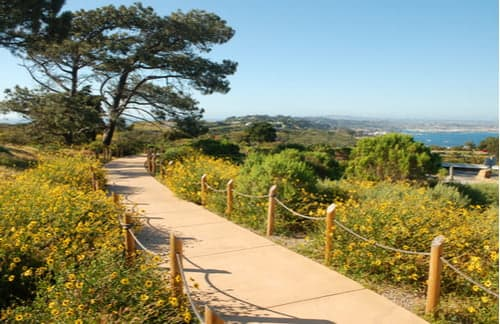 walking trail at the cabrillo national monument
