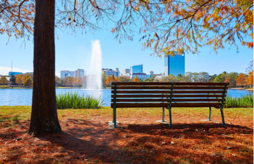 view of a lake on an autumn day in Hermann Park with a bench