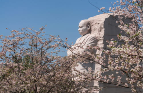 martin luther king jr national memorial in Washington DC near national mall
