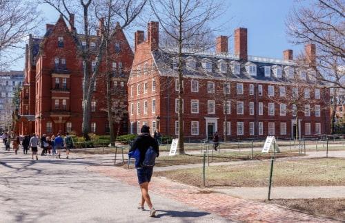 a student walks around harvard's campus