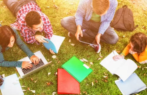 group of students study on the lawn at University of Chicago