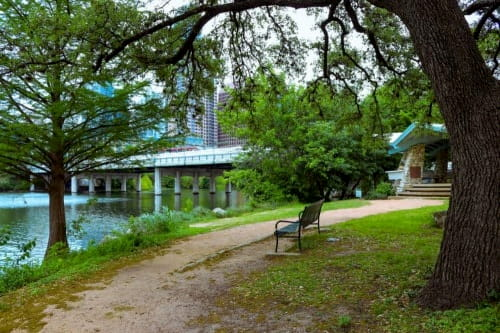 a bench on a trail in zilker park